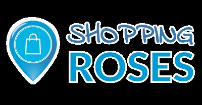 Planificació estratègica i accions de l'entitat Roses Comerç – Shooping Roses. Desenvolupament del projecte: xerrades per a la revolució turística